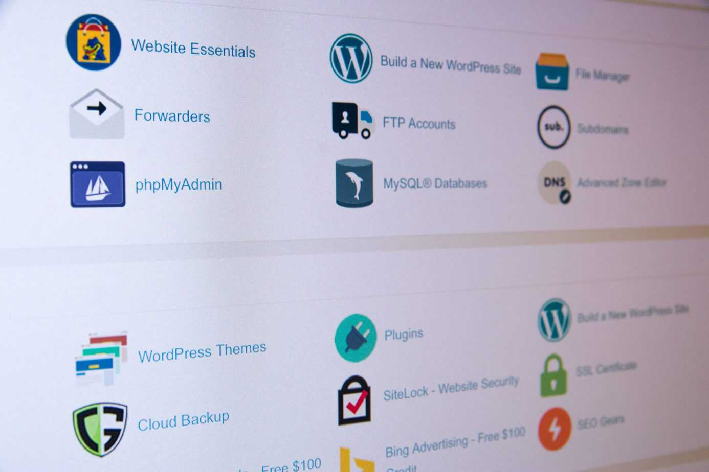 The Learning Chick WordPress Web Hosting
